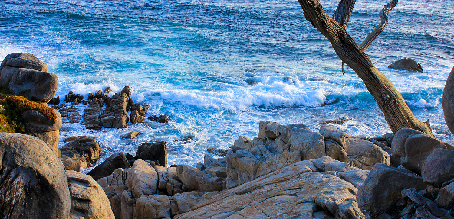 ENJOY THE BEAUTIFUL VISTAS THAT MONTEREY AND SEASIDE HAS TO OFFER