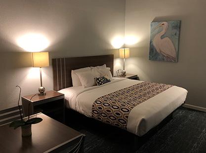Welcome To The Magic Carpet Lodge - King Room